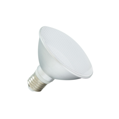 AMPOULE LED E27 PAR30 10W IP65